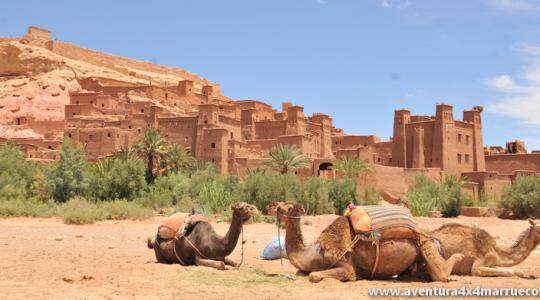 OFERTA Puente Verano en Marruecos