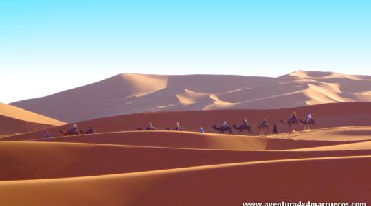 Tour al Desierto Puente de Junio